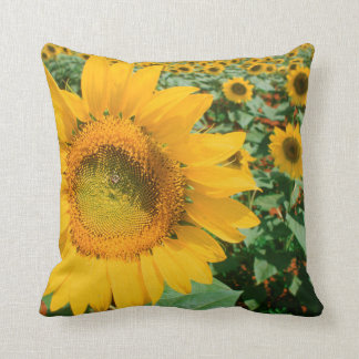 Field Of Sunflowers. Heidleberg District Cushion