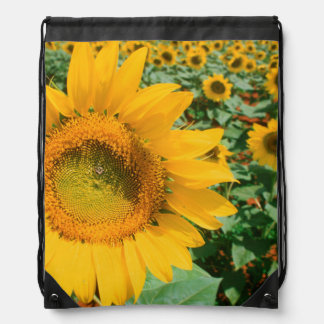 Field Of Sunflowers. Heidleberg District Drawstring Bag