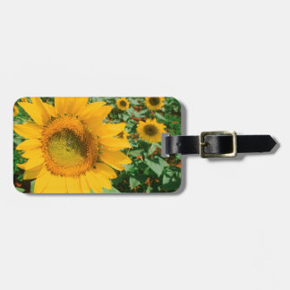 Field Of Sunflowers. Heidleberg District Luggage Tag