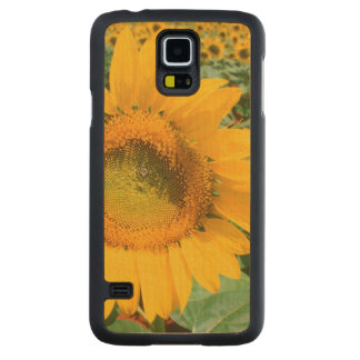 Field Of Sunflowers. Heidleberg District Maple Galaxy S5 Slim Case