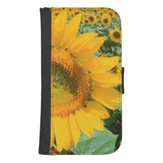 Field Of Sunflowers. Heidleberg District Samsung S4 Wallet Case