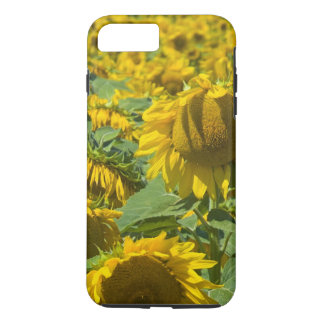 Field of Sunflowers iPhone 7 Plus Case