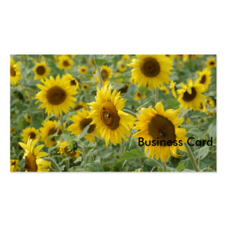 Field of Sunflowers Pack Of Standard Business Cards