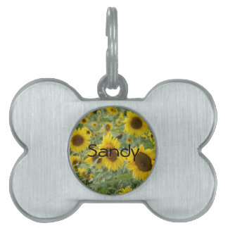 Field of Sunflowers Pet ID Tag