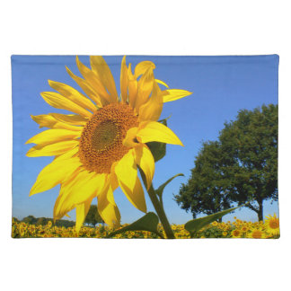 Field Of Sunflowers, Sunflower Placemat