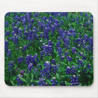Field of Texas Bluebonnets Mouse Mat