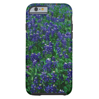 Field of Texas Bluebonnets Tough iPhone 6 Case