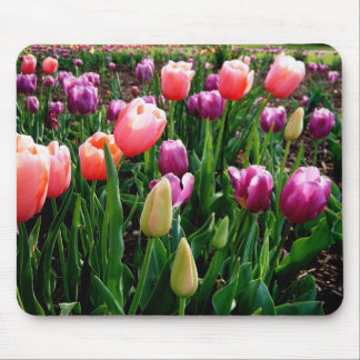 Field of Tulips Mouse Mat