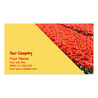 Field of tulips pack of standard business cards