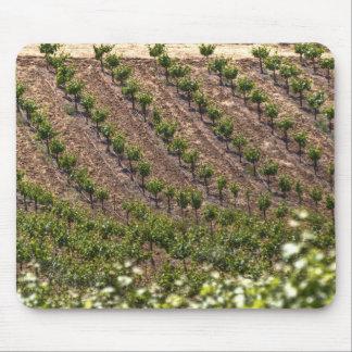 Field Of Vines Mousepad