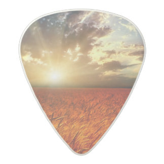 Field of wheat and sunset acetal guitar pick