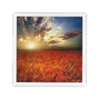 Field of wheat and sunset acrylic tray