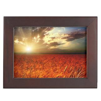 Field of wheat and sunset memory box