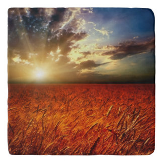 Field of wheat and sunset trivet