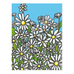 Field of white daisy flowers post card