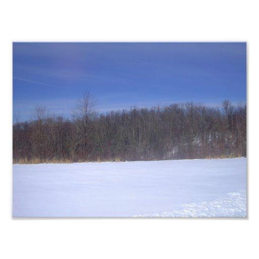 Field of White Art Photo