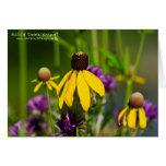 Field of Wildflowers Cards