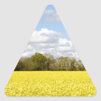 Field of yellow rapeseed triangle sticker