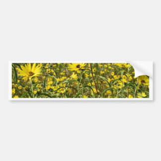 Field of Yellow Wild Flowers For The Beautiful Bee Bumper Sticker
