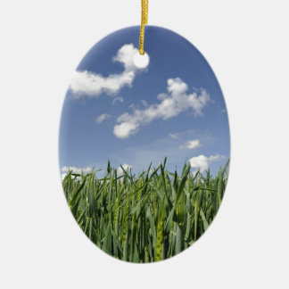 Field of young corn christmas ornament