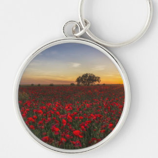 Field Silver-Colored Round Key Ring