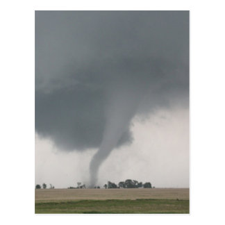 Field Tornado Postcard