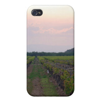 Fields of crops 3 cover for iPhone 4