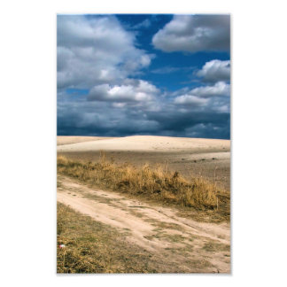 Fields of culture and clouds photo print
