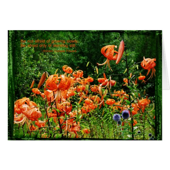 Fields of Lilies-BirthDAY Card