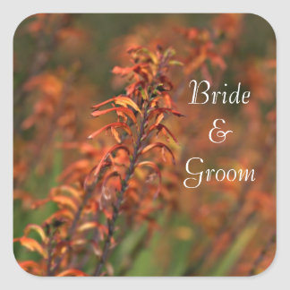 Fields of Orange Agave Bride and Groom Square Sticker