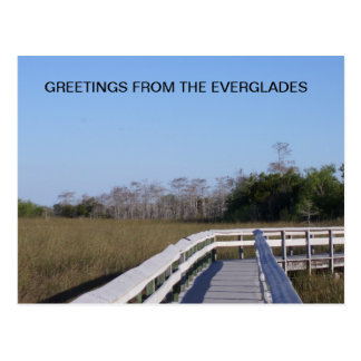 FIELDS OF THE EVERGLADES POSTCARD