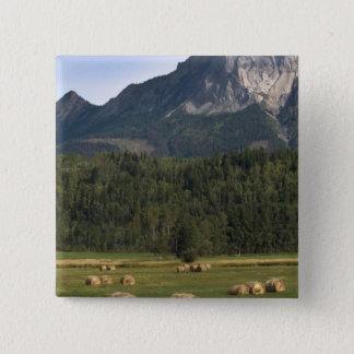 Fields with bailed hay, Alberta, Canada 15 Cm Square Badge