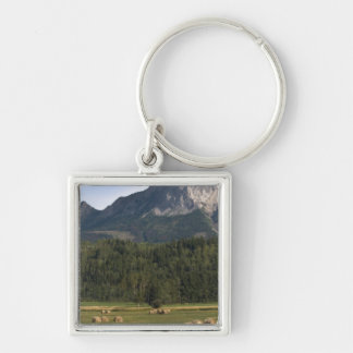 Fields with bailed hay, Alberta, Canada Silver-Colored Square Key Ring