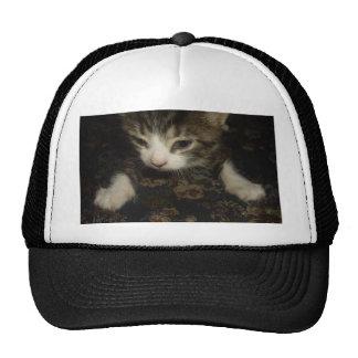 Fierce Kitty Cap