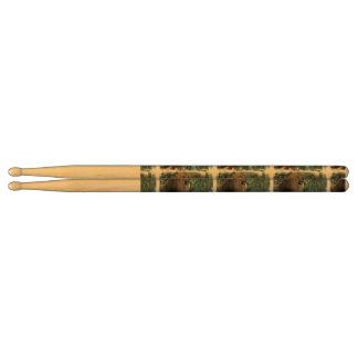 Fierce Lion Drum Sticks