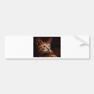 Fiery Art Cat Bumper Stickers