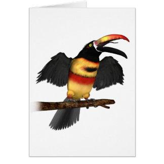 Fiery-Bill Aracari Card