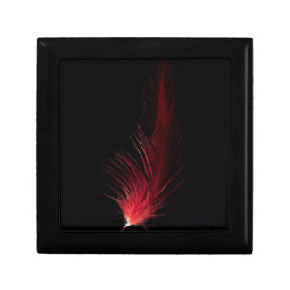 Fiery Feather Gift Box