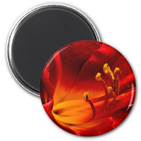 Fiery Lily 6 Cm Round Magnet