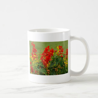 Fiery Red Hot Sally Salvia Flower Garden Basic White Mug