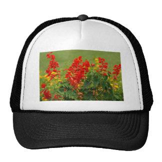 Fiery Red Hot Sally Salvia Flower Garden Trucker Hat