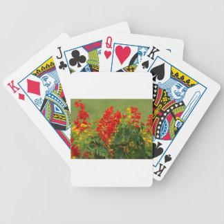 Fiery Red Hot Sally Salvia Flower Garden Card Deck