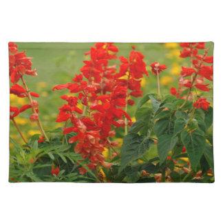 Fiery Red Hot Sally Salvia Flower Garden Placemats
