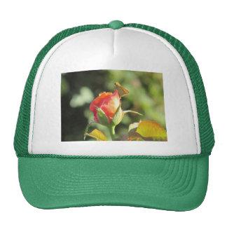 Fiery Skipper Butterfly on Rosebud Trucker Hat