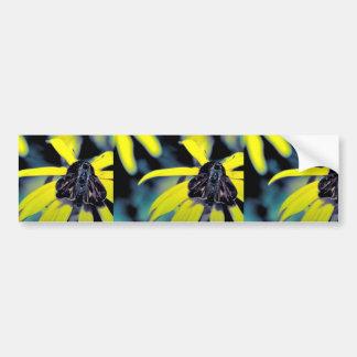 Fiery skipper on Black-eyed susan Bumper Stickers