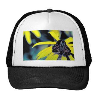 Fiery skipper on Black-eyed susan Trucker Hats