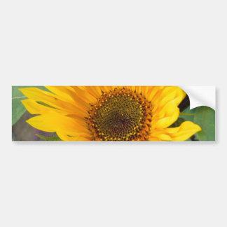 Fiery Sunflower Bumper Sticker