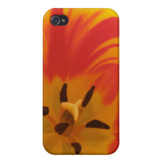 Fiery Tulip  iPhone 4/4S Cover