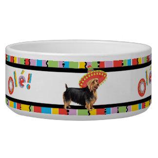 Fiesta Australian Terrier