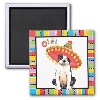 Fiesta Boston Terrier Magnet